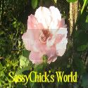 SassyChick's World