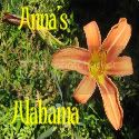 Anna&#39;s Alabama